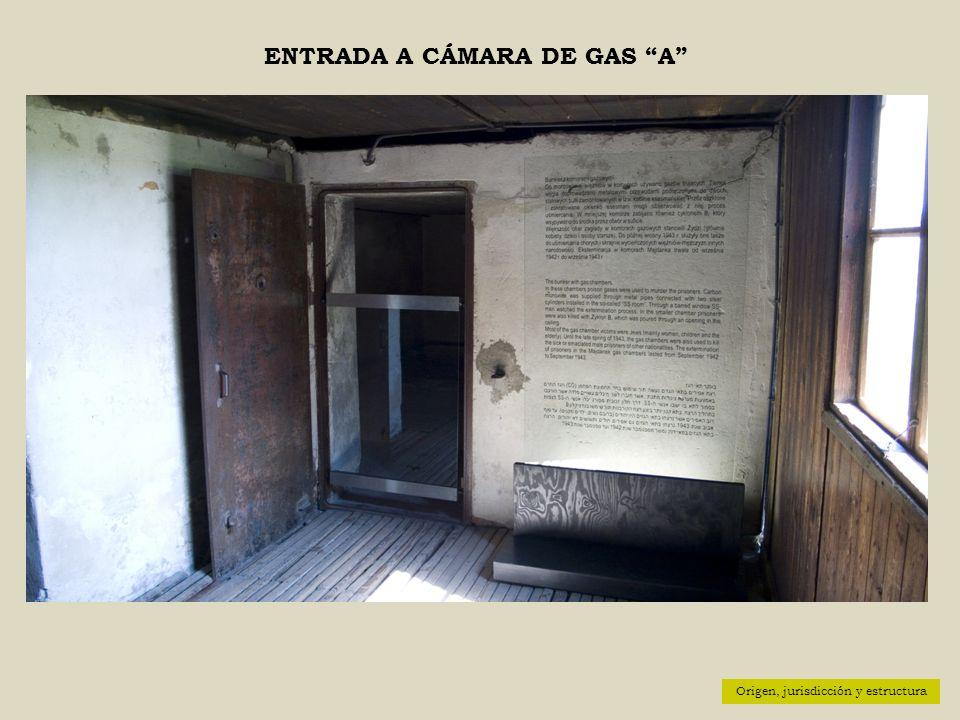 ENTRADA A CÁMARA DE GAS A Origen, jurisdicción y estructura