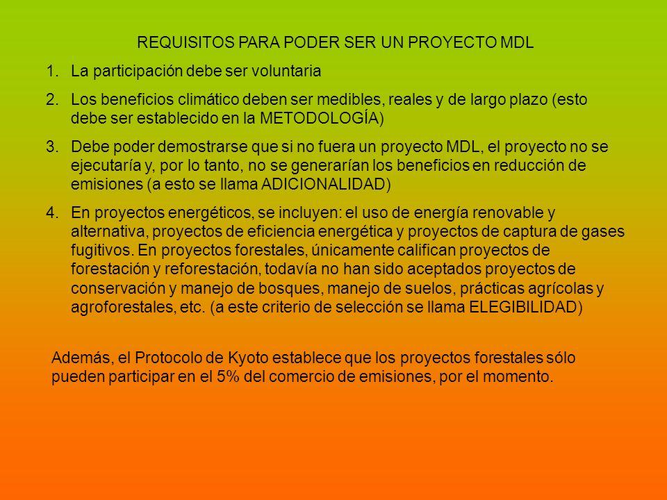 REQUISITOS PARA PODER SER UN PROYECTO MDL 1.La participación debe ser voluntaria 2.Los beneficios climático deben ser medibles, reales y de largo plaz