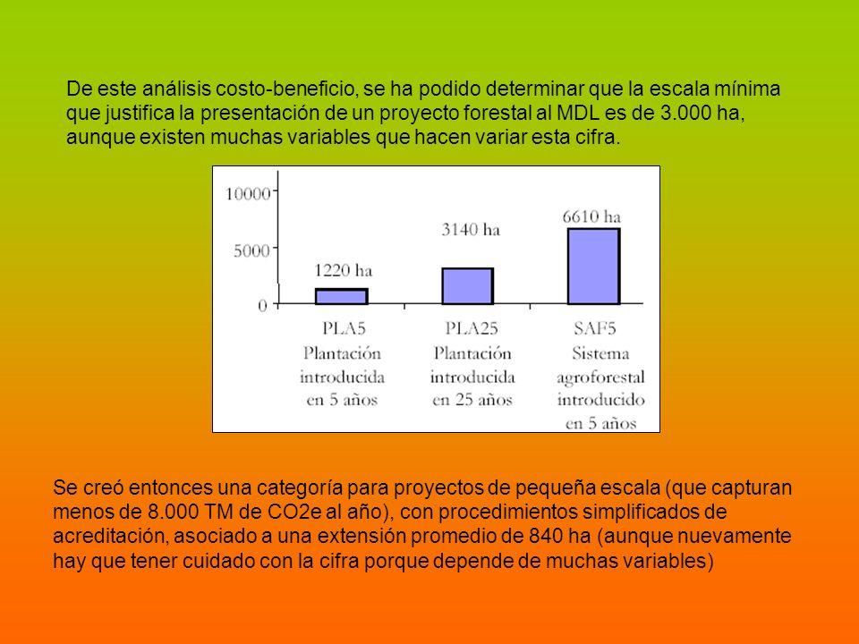 De este análisis costo-beneficio, se ha podido determinar que la escala mínima que justifica la presentación de un proyecto forestal al MDL es de 3.00