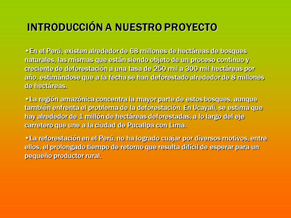INTRODUCCIÓN A NUESTRO PROYECTO En el Perú, existen alrededor de 68 millones de hectáreas de bosques naturales, las mismas que están siendo objeto de