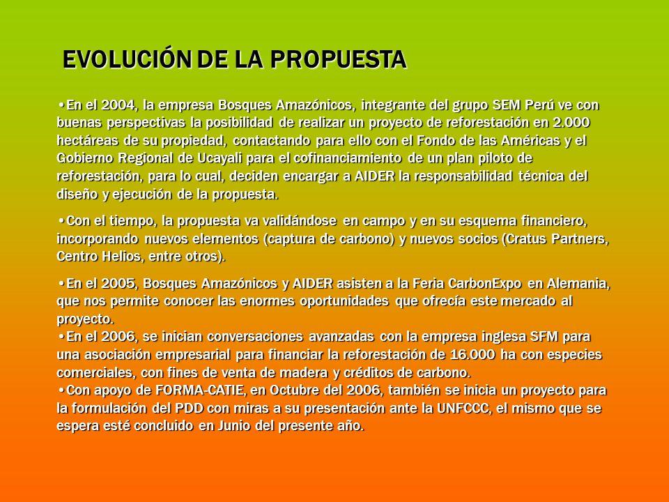 EVOLUCIÓN DE LA PROPUESTA En el 2004, la empresa Bosques Amazónicos, integrante del grupo SEM Perú ve con buenas perspectivas la posibilidad de realiz