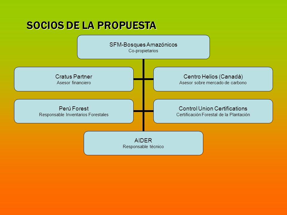 SFM-Bosques Amazónicos Co-propietarios AIDER Responsable técnico Cratus Partner Asesor financiero Centro Helios (Canadá) Asesor sobre mercado de carbo