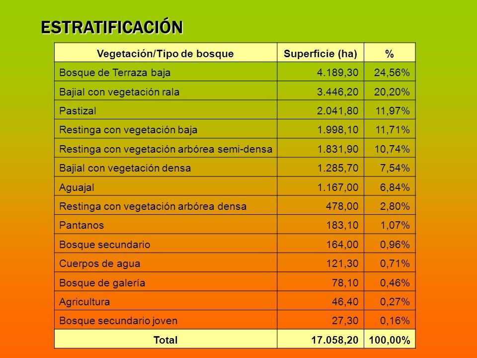 Vegetación/Tipo de bosqueSuperficie (ha)% Bosque de Terraza baja 4.189,3024,56% Bajial con vegetación rala 3.446,2020,20% Pastizal 2.041,8011,97% Rest