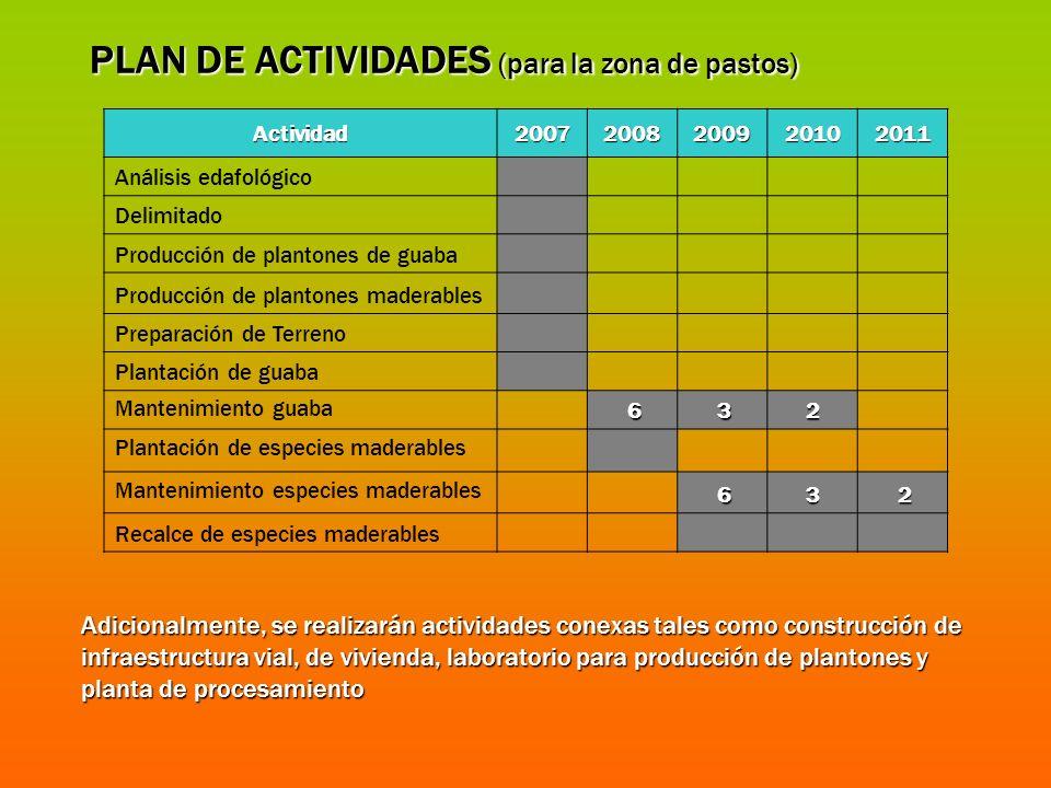 Actividad20072008200920102011 Análisis edafológico Delimitado Producción de plantones de guaba Producción de plantones maderables Preparación de Terre