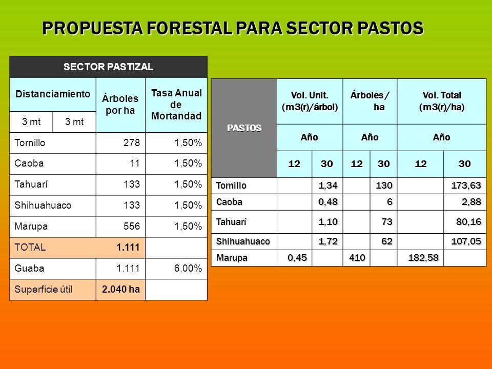 PROPUESTA FORESTAL PARA SECTOR PASTOS SECTOR PASTIZAL Distanciamiento Árboles por ha Tasa Anual de Mortandad 3 mt Tornillo2781,50% Caoba111,50% Tahuar