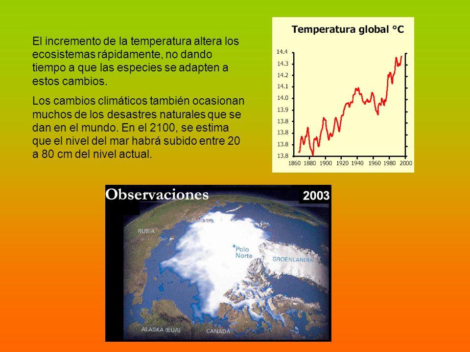 El incremento de la temperatura altera los ecosistemas rápidamente, no dando tiempo a que las especies se adapten a estos cambios. Los cambios climáti