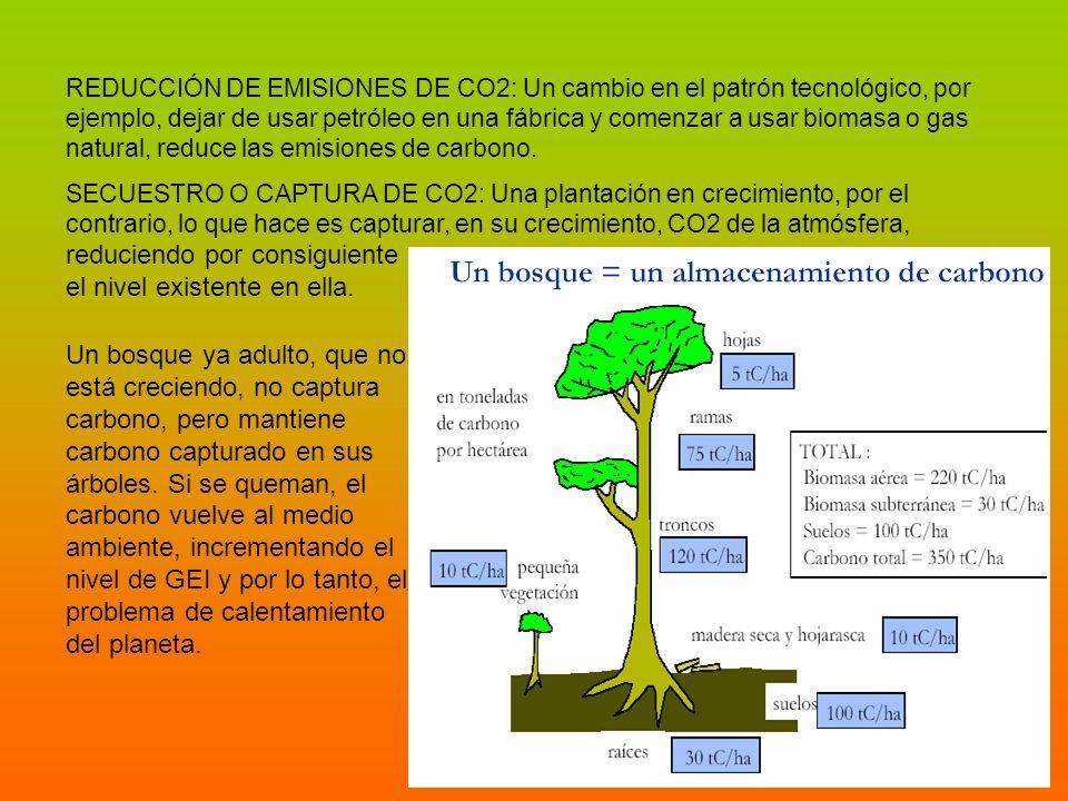 REDUCCIÓN DE EMISIONES DE CO2: Un cambio en el patrón tecnológico, por ejemplo, dejar de usar petróleo en una fábrica y comenzar a usar biomasa o gas