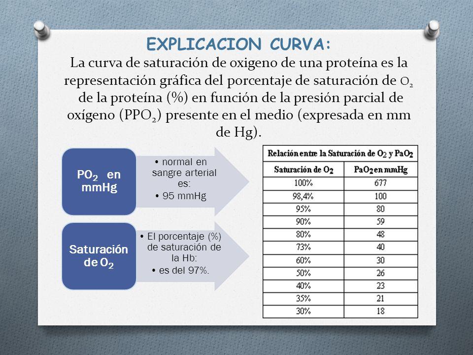 EXPLICACION CURVA: La curva de saturación de oxigeno de una proteína es la representación gráfica del porcentaje de saturación de O 2 de la proteína (%) en función de la presión parcial de oxígeno (PPO 2 ) presente en el medio (expresada en mm de Hg).