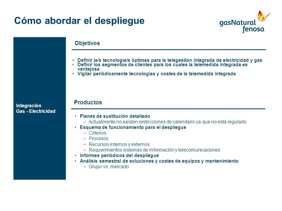 Cómo abordar el despliegue Definir la/s tecnología/s óptimas para la telegestión integrada de electricidad y gas Definir los segmentos de clientes par