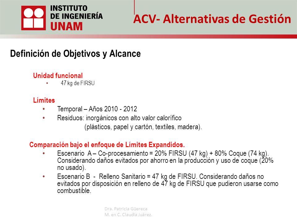 ACV- Alternativas de Gestión Unidad funcional 47 kg de FIRSU Límites Temporal – Años 2010 - 2012 Residuos: inorgánicos con alto valor calorífico (plás