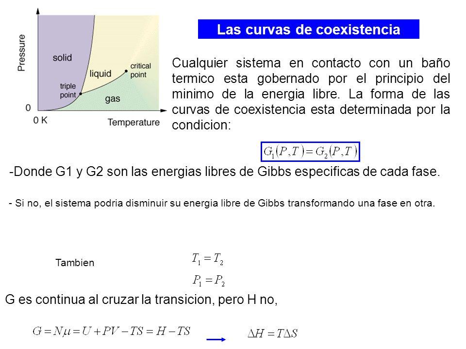 Las curvas de coexistencia Cualquier sistema en contacto con un baño termico esta gobernado por el principio del minimo de la energia libre. La forma