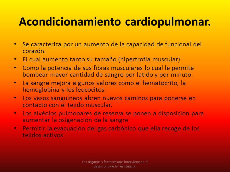 Acondicionamiento cardiopulmonar. Se caracteriza por un aumento de la capacidad de funcional del corazón. El cual aumento tanto su tamaño (hipertrofia