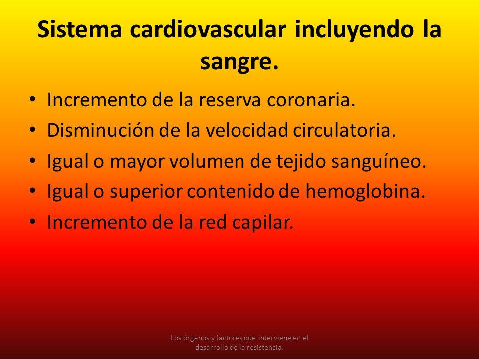 Sistema cardiovascular incluyendo la sangre. Incremento de la reserva coronaria. Disminución de la velocidad circulatoria. Igual o mayor volumen de te