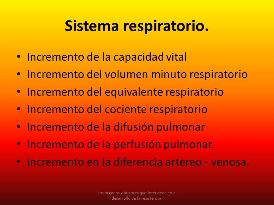 Sistema respiratorio. Incremento de la capacidad vital Incremento del volumen minuto respiratorio Incremento del equivalente respiratorio Incremento d