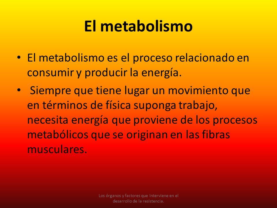 El metabolismo El metabolismo es el proceso relacionado en consumir y producir la energía. Siempre que tiene lugar un movimiento que en términos de fí