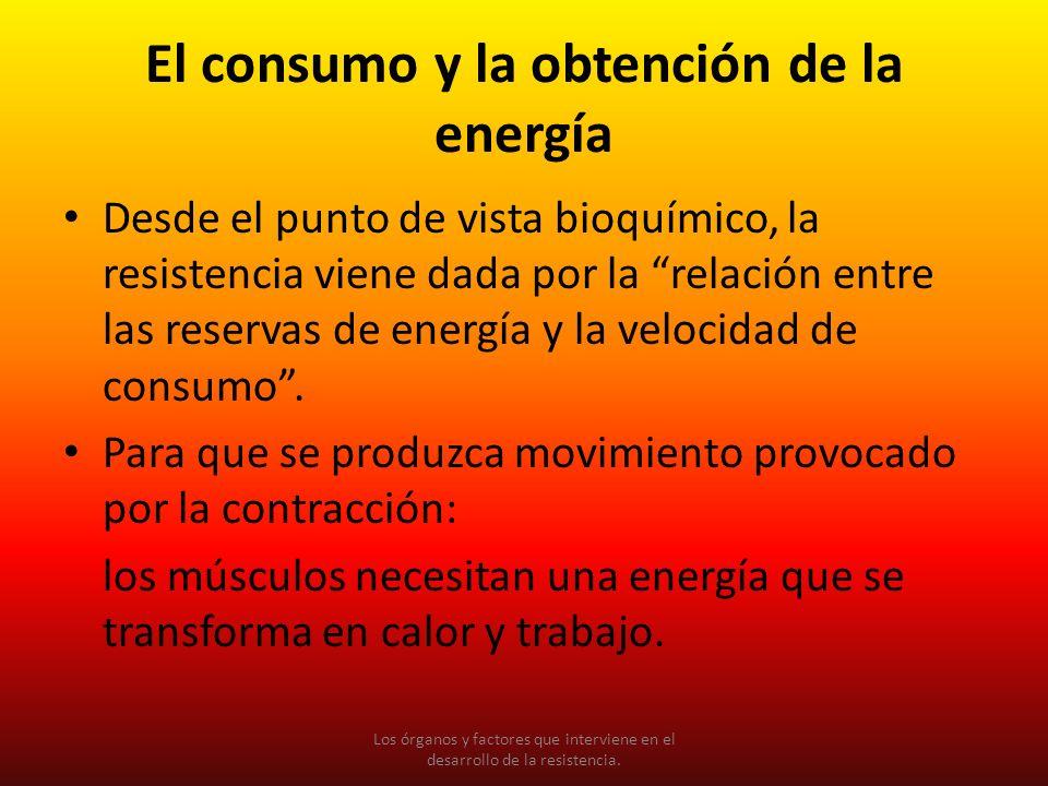 El consumo y la obtención de la energía Desde el punto de vista bioquímico, la resistencia viene dada por la relación entre las reservas de energía y