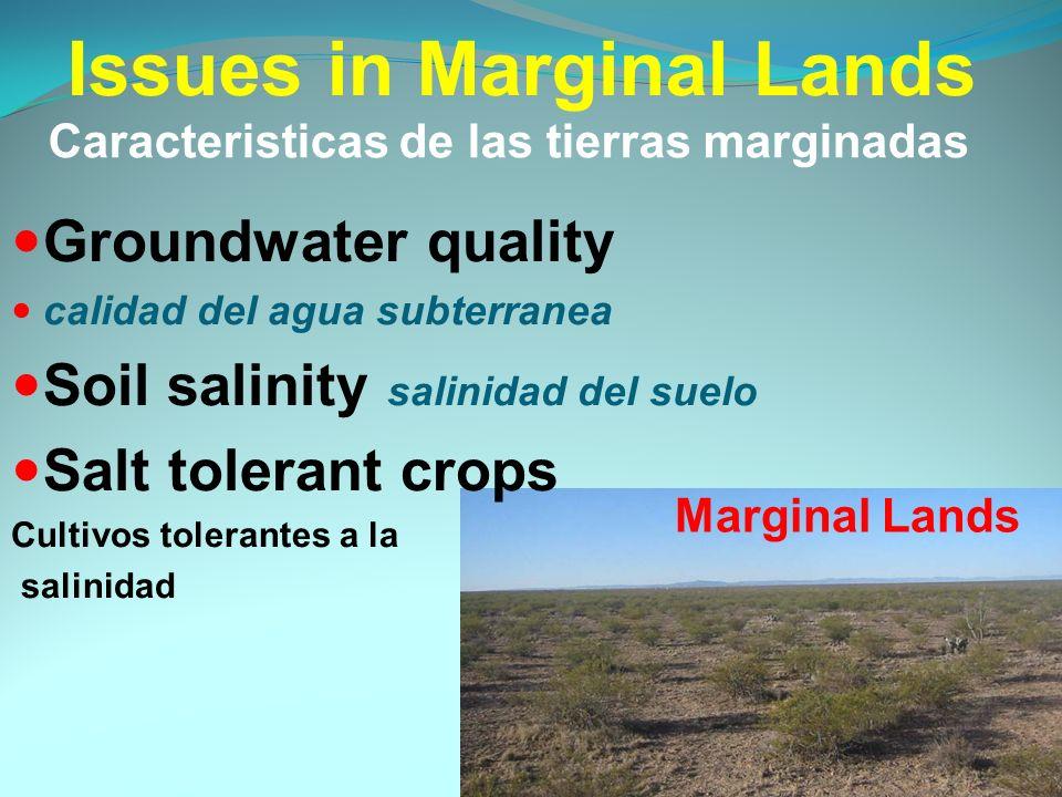 Issues in Marginal Lands Groundwater quality calidad del agua subterranea Soil salinity salinidad del suelo Salt tolerant crops Cultivos tolerantes a la salinidad Marginal Lands Caracteristicas de las tierras marginadas