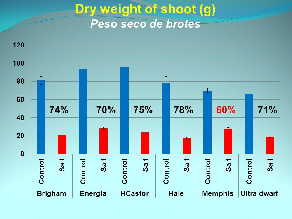 Dry weight of shoot (g) Peso seco de brotes 74%70%75%78%60%71%