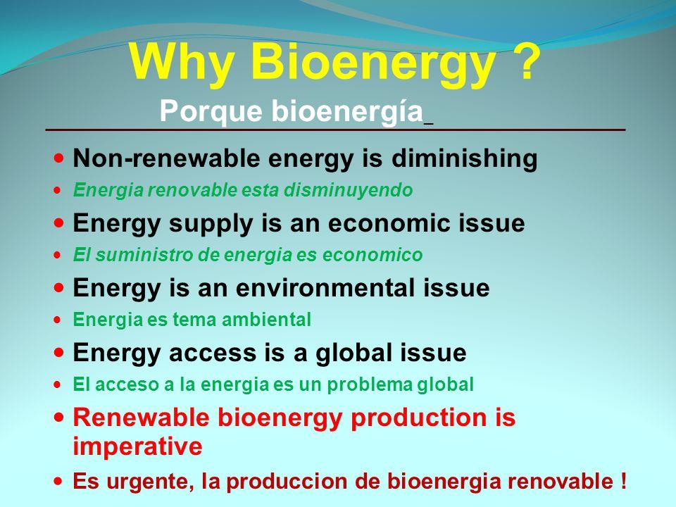 Why Bioenergy .
