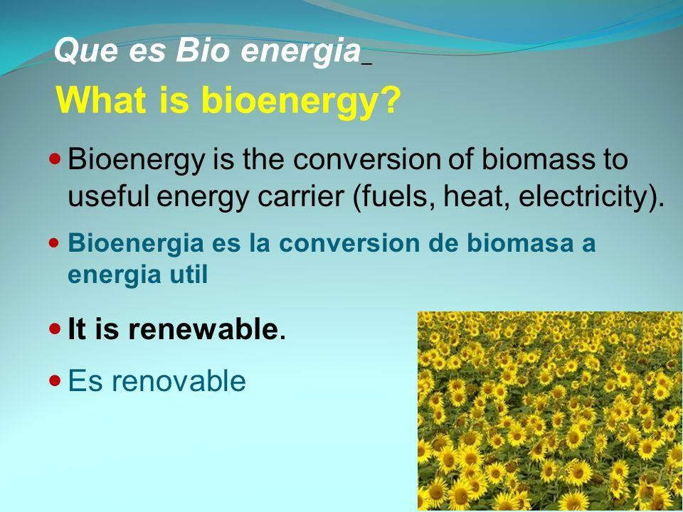 Potential Bioenergy Crops Potencial de los cultivos bionergeticos Plant speciesEthanol efficiency (t/ha) Barley2150 Maize2874 Sugar beet5600 Sugar cane5400 Sweet potato2400 Sweet sorghum5400