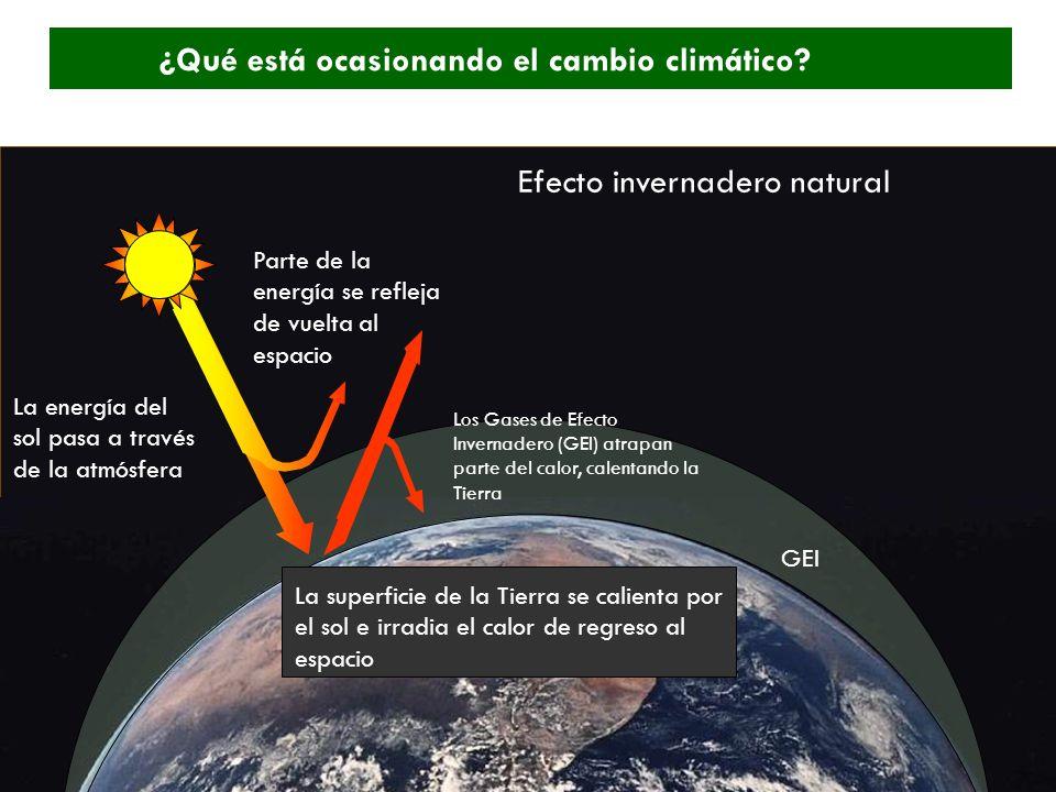 GEI Los Gases de Efecto Invernadero (GEI) atrapan parte del calor, calentando la Tierra La superficie de la Tierra se calienta por el sol e irradia el calor de regreso al espacio Parte de la energía se refleja de vuelta al espacio Efecto invernadero natural La energía del sol pasa a través de la atmósfera ¿Qué está ocasionando el cambio climático?