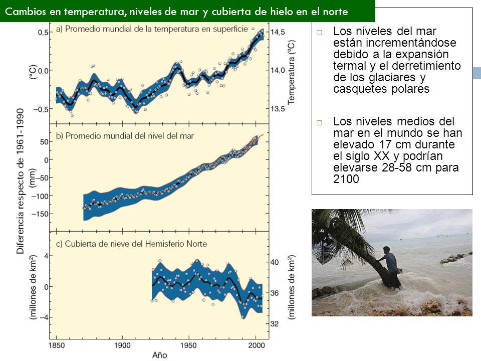 Los niveles del mar están incrementándose debido a la expansión termal y el derretimiento de los glaciares y casquetes polares Los niveles medios del mar en el mundo se han elevado 17 cm durante el siglo XX y podrían elevarse 28-58 cm para 2100 Cambios en temperatura, niveles de mar y cubierta de hielo en el norte