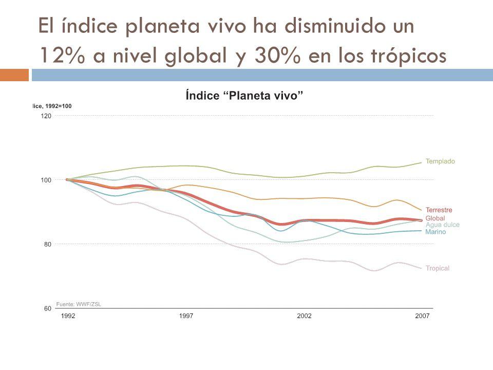 El índice planeta vivo ha disminuido un 12% a nivel global y 30% en los trópicos