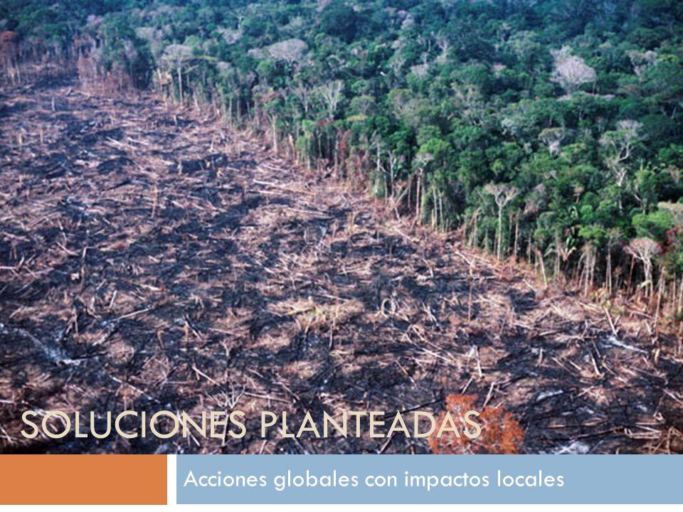 Acciones globales con impactos locales SOLUCIONES PLANTEADAS