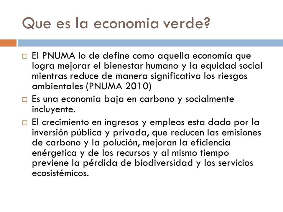 Que es la economia verde? El PNUMA lo de define como aquella economía que logra mejorar el bienestar humano y la equidad social mientras reduce de man