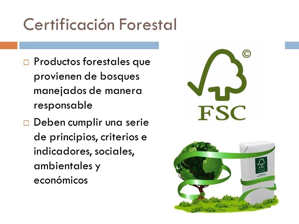 Certificación Forestal Productos forestales que provienen de bosques manejados de manera responsable Deben cumplir una serie de principios, criterios e indicadores, sociales, ambientales y económicos