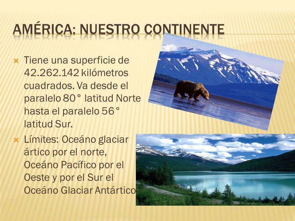 Tiene una superficie de 42.262.142 kilómetros cuadrados.