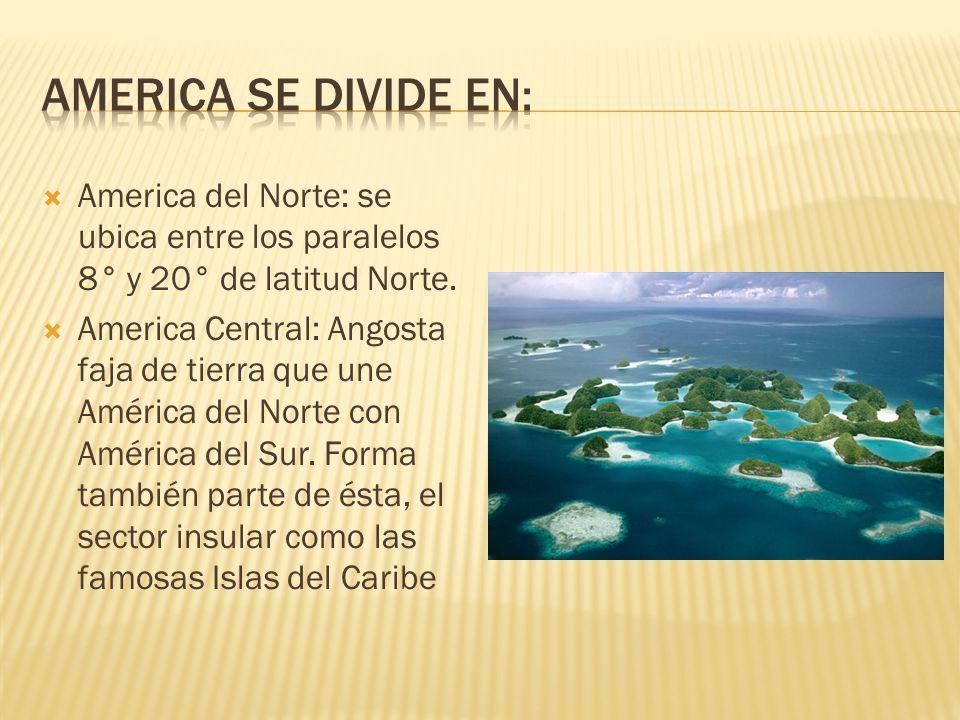 America del Norte: se ubica entre los paralelos 8° y 20° de latitud Norte.