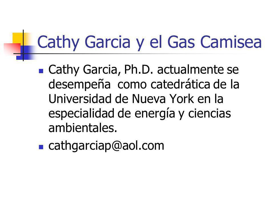 Cathy Garcia y el Gas Camisea Cathy Garcia, Ph.D. actualmente se desempeña como catedrática de la Universidad de Nueva York en la especialidad de ener