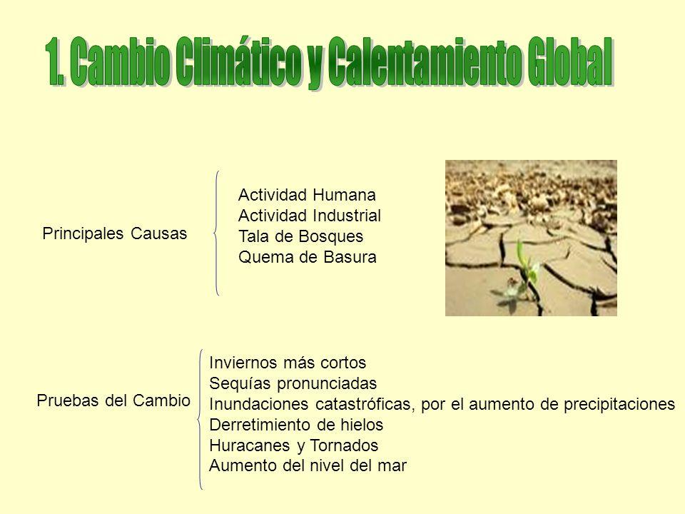 El Calentamiento Global es producto de la actividad humana, En Argentina hay una tendencia al aumento de lluvias en el Centro y Este del país, y una disminución hacia el oeste.