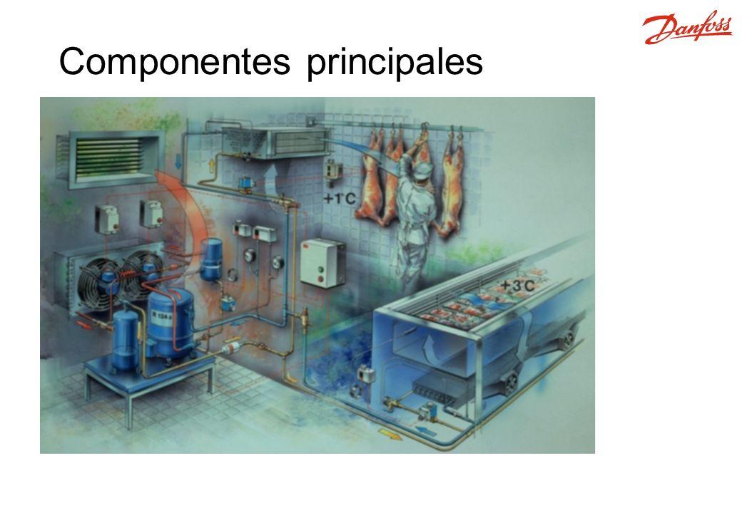 Condensador Recipiente Evaporador Válvula de expansión Compresor Sistema Simple de Refrigeración