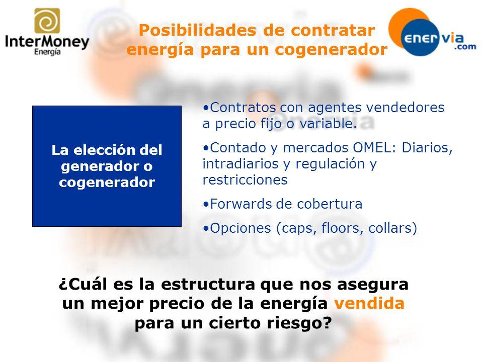Posibilidades de contratar energía para un cogenerador La elección del generador o cogenerador Contratos con agentes vendedores a precio fijo o variab
