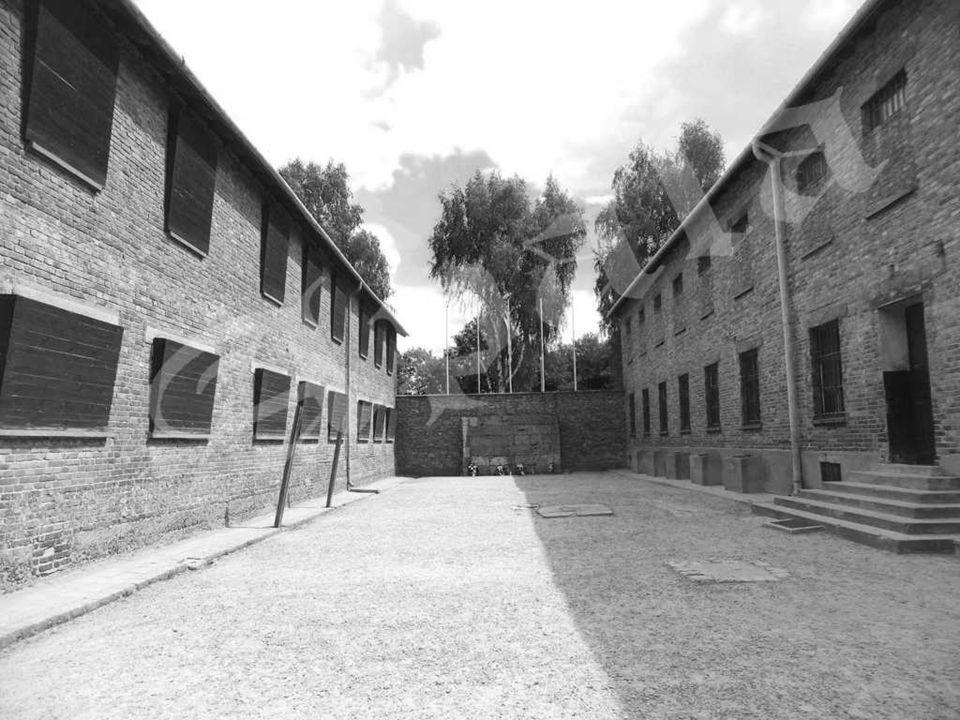 El bloque nº 11 era la prisión dentro del campo. En este edificio había celdas pequeñas donde se encarcelaba a civiles en espera de juicio en las que