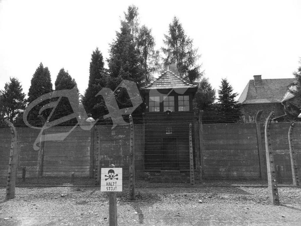 Fragmento de la cerca en el campo principal de Auschwitz (Auschwitz I). Para imposibilitar la fuga a los presos, las SS rodearon el campo con una cerc
