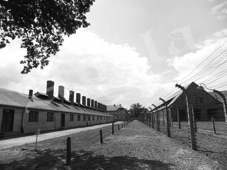Auschwitz II – Birkenau – ruinas de la cámara de gas y crematorio II.