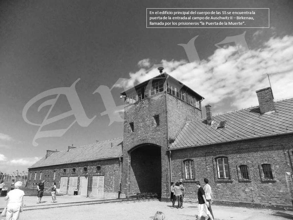 Al fondo, la puerta principal del KL Birkenau, por la que entraban al campo los transportes con los deportados. Antes los trenes paraban fuera del cam