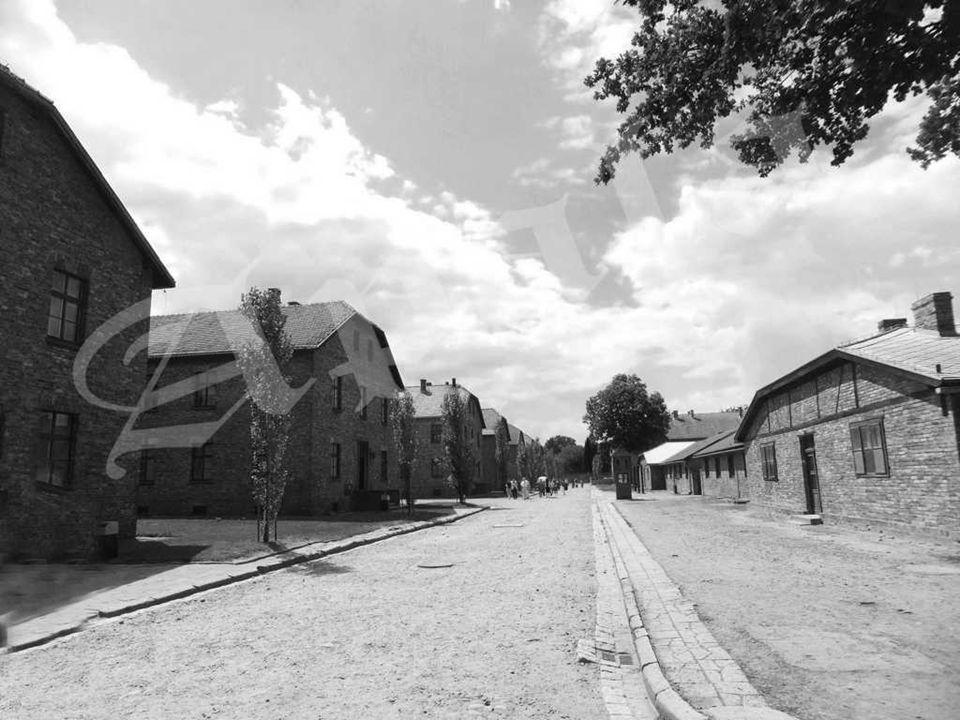 Barracones de madera en el sector blla, servía de cuarentena para los hombres presos del KL Auschwitz II – Birkenau.
