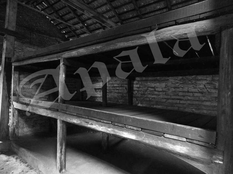 Dentro de la barraca del muro (Auschwitz II – Birkenau) Cada uno de esas barracas estaba atestada de cientos de presos. De los barracones procedian ge