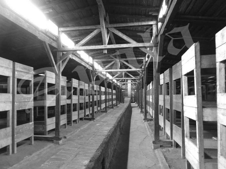 Barracones de madera en el sector blla, servía de cuarentena para los hombres presos del KL Auschwitz II – Birkenau. La finalidad de la cuarentena era