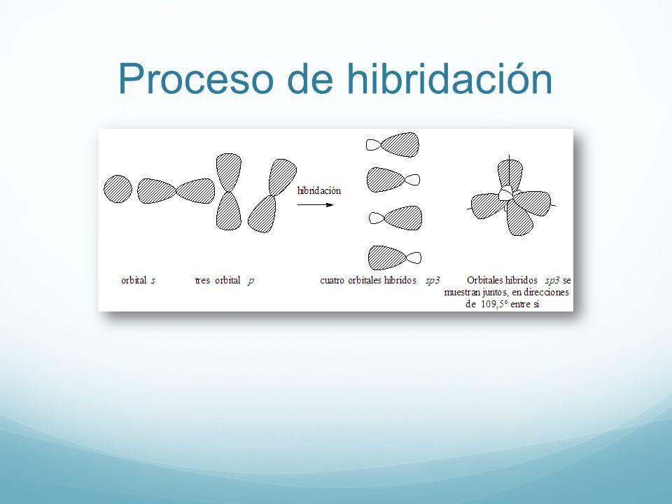 Proceso de hibridación