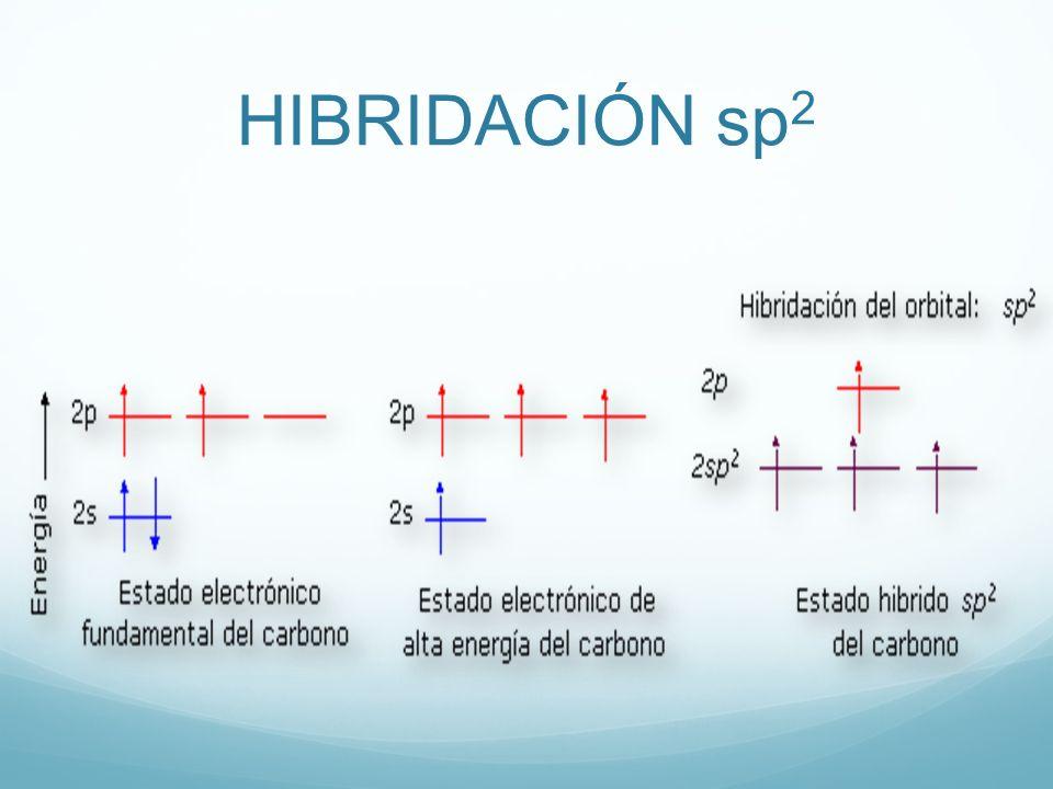 HIBRIDACIÓN sp 2