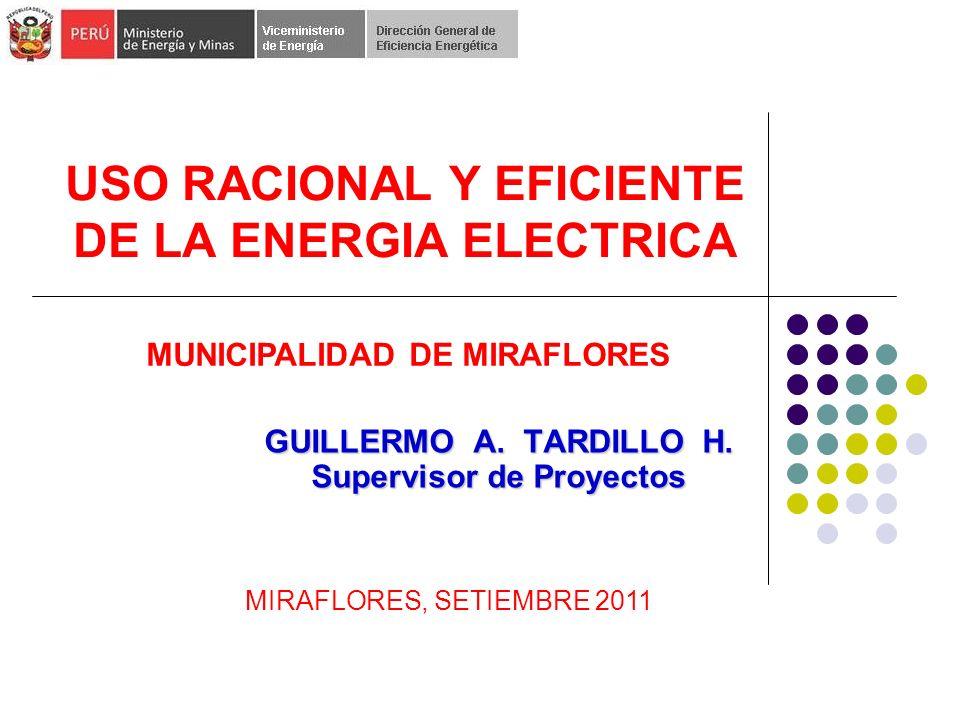 USO RACIONAL Y EFICIENTE DE LA ENERGIA ELECTRICA GUILLERMO A.
