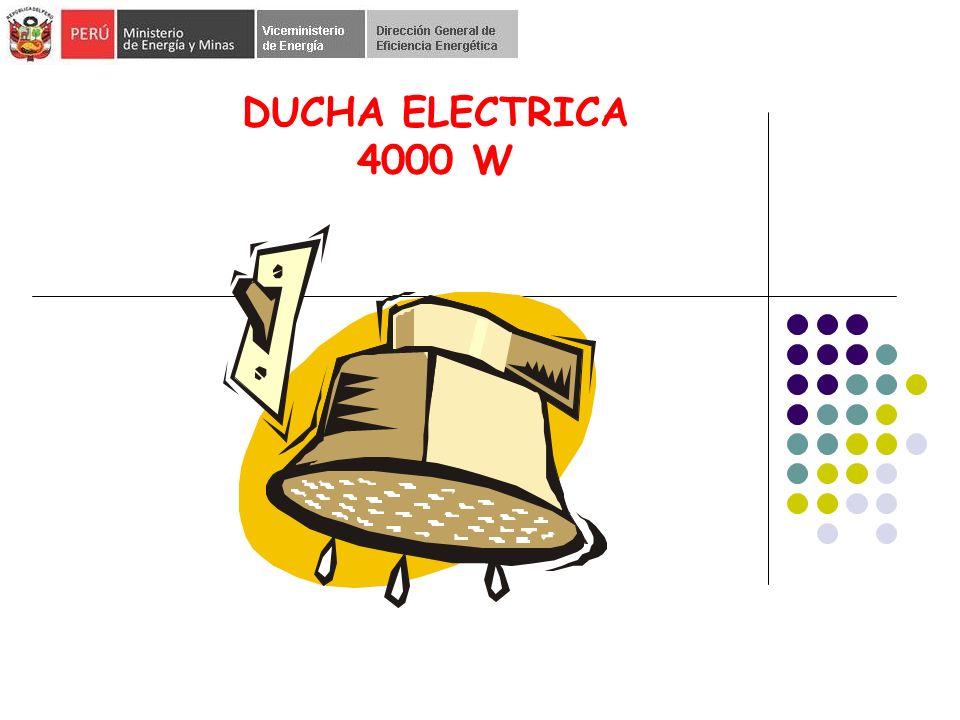 DUCHA ELECTRICA 4000 W