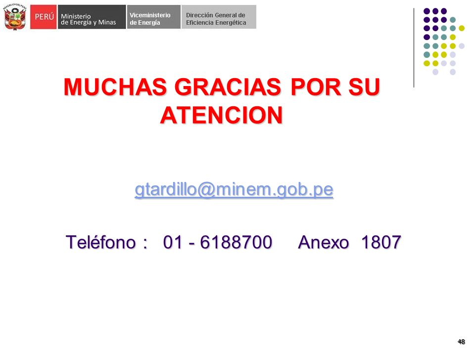 48 MUCHAS GRACIAS POR SU ATENCION gtardillo@minem.gob.pe Teléfono : 01 - 6188700 Anexo 1807