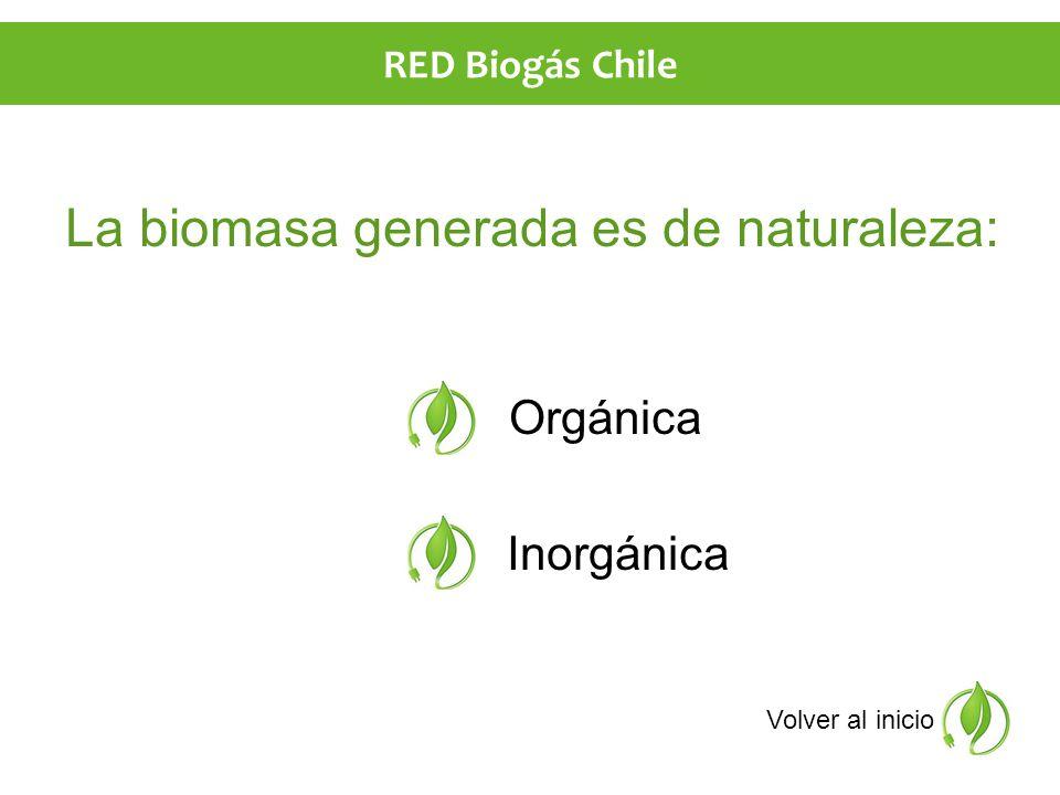 La biomasa generada es de naturaleza: Orgánica Inorgánica Volver al inicio RED Biogás Chile