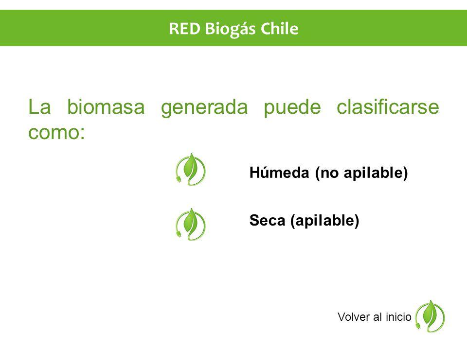 La biomasa generada puede clasificarse como: Húmeda (no apilable) Seca (apilable) Volver al inicio RED Biogás Chile